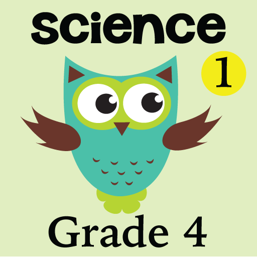 Amazon.com: 4th Grade Science Glossary #1: Learn and Practice ...