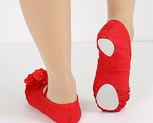Aivtalk Ballettschuhe Weich Spitzenschuhe Trainings Ballettschläppchen Schuhe Blumen Tanzschuhe mit Lederverstärkung in den Größen 22-37 für Mädchen Damen