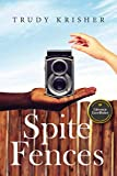 Spite Fences: 25th Anniversary Edition