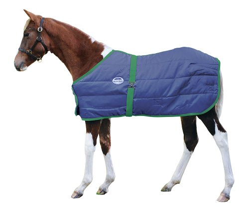 - Weatherbeeta 300D Growing Foal Blanket - Navy/Hunter