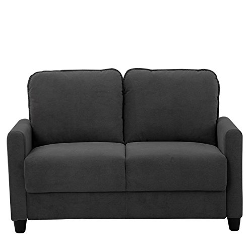 Lifestyle Solutions Scottsdale Loveseat in Black