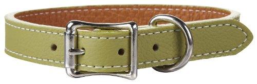 "Auburn Tuscany Collar - Green - 5/8""X12"""