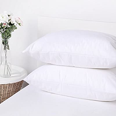 Dreamaker 2X 4X Bed Bug & Dust Mite Control Stain Water Resistant Pillow Protector Standard Zippered Pillowcase Cover Sham