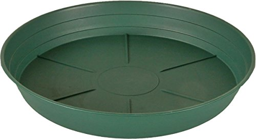- Hydrofarm HGS10P Green Premium Saucer 10-Inch, Pack of 25, 10 Inch,