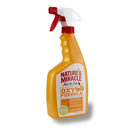 (Nature's Miracle Just for Cats Orange Oxy Stain and Odor Remover, 24-Ounce (308139))