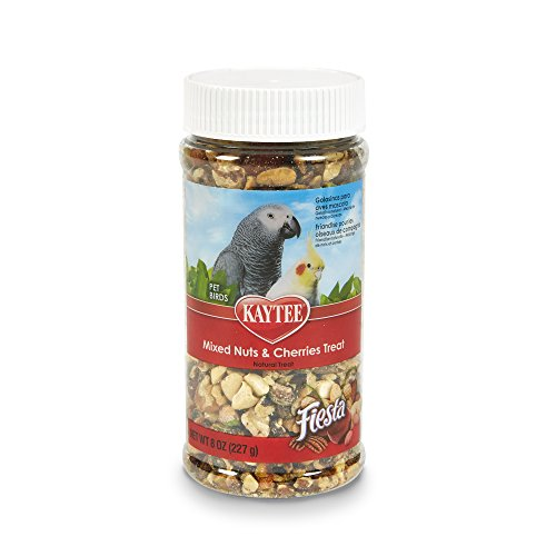 41dx45XeNPL - Kaytee Fiesta Mixed Nuts and Cherries Treat for Pet Birds, 8-oz jar