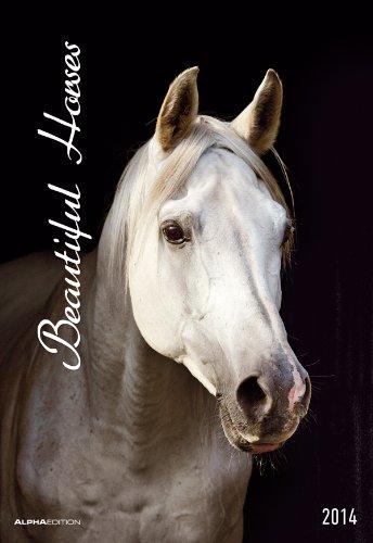 beautiful-horses-der-grosse-pferdekalender-2014
