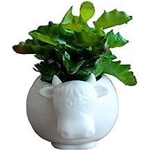 Cute Animal Cow Shaped Cartoon Ceramic Succulent Cactus Vase Flower Pot (Plant Not Included)