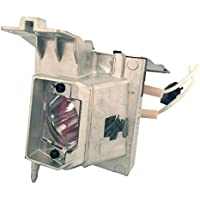 Projector Lamp for the IN110xa and IN110xv Series