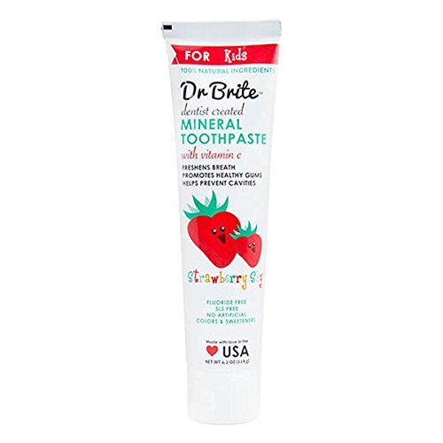 DR. BRITE KID'S STRAWBERRY NATURAL FLUORIDE-FREE MINERAL TOOTHPASTE 4.2 OZ.