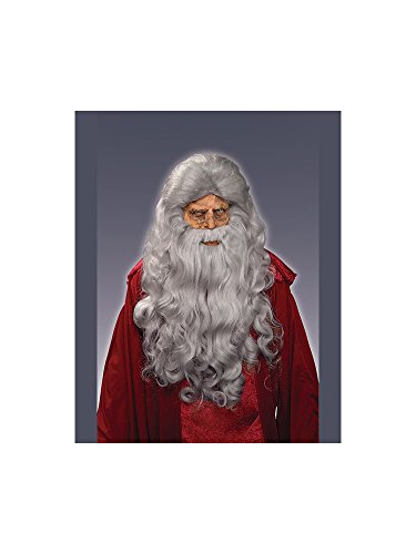 Forum Novelties Men's Moses Wig and Beard Adult Costume Accessory, Gray, One Size -