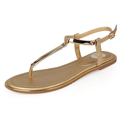 Thong Flat Heel Sandal - 5
