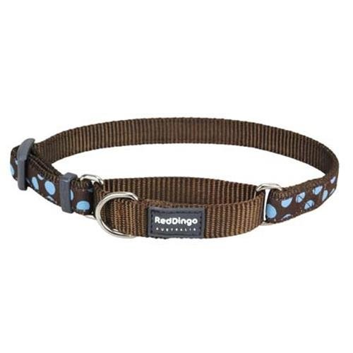 Red Dingo Blue Spots Brown Large Martingale Collar
