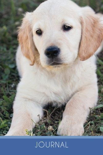 Journal (6x9 Journal): Golden Retriever Puppy, Lightly Lined, 120 Pages, Perfect for Notes and Journaling pdf