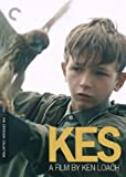 Kes (The Criterion Collection)