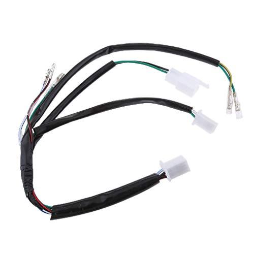B Blesiya Wiring Harness Connector Loom for 50 90 110 125 140cc Dirt Bike: