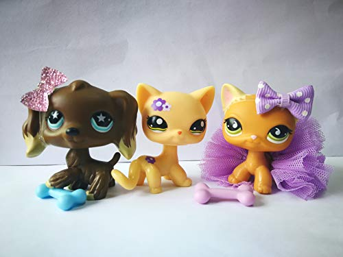 (LPSOLD LPS Shorthair Cat 1962 Flower 525 Yellow Kitty Kitten LPS Cocker Spaniel Chocolate Brown Star Eyes Dog Puppy with Accessories Lot Boy Girl Gift Toy Figure Set)