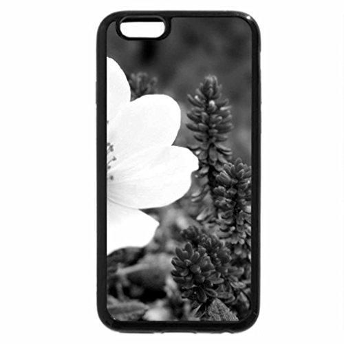 iPhone 6S Plus Case, iPhone 6 Plus Case (Black & White) - white in nature