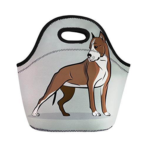 Semtomn Neoprene Lunch Tote Bag Brown Staffordshire Pit Bull Terrier Dog Animal Strong American Reusable Cooler Bags Insulated Thermal Picnic Handbag for Travel,School,Outdoors, Work