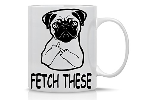 AW Fashions Grumpy Cat Mug - 11oz Coffee Mugs - Cute Pet Gifts for Animal Lovers - Cool Themed Pug Life Gift – Perfect For Christmas and Birthdays - Cute Pug Fetch This Middle Finger
