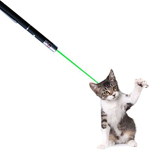 OCALER Professional Cat Catch the Beam Light - Three Colors (Green, Red, Blue) - Interactive Exercise Toy Pet Cat Training Tool (Green)