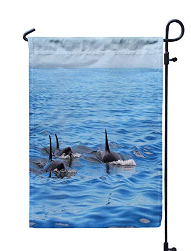 GROOTEY Welcome Outdoor Garden Flag Home Yard Decorative 12X18 Inches Pod Killer Whales Swimming Victoria Canada Blue Sky Ocean Double Sided Seasonal Garden Flags]()