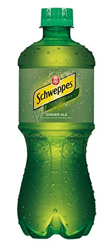 Schweppes, Ginger Ale, 20 Oz (Pack of 24) - Schweppes Ginger Ale
