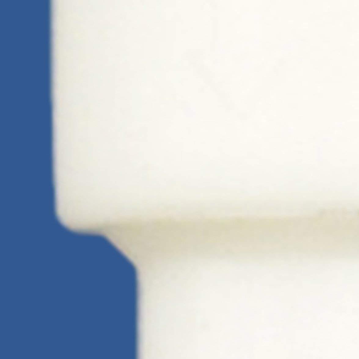 Valvola di ritegno in plastica resistente alla pressione valvola di ritegno valvola di ritegno anti-ozono valvola di ritegno resistente allolio Bianca
