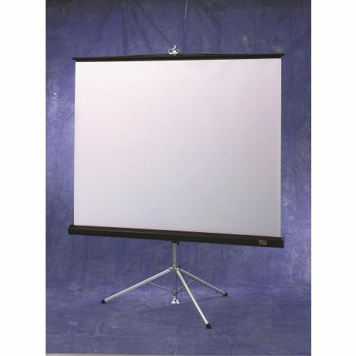 Draper Inc Matte White Diplomat/R Portable Screen with Black Carpeted Case - 6' diagonal NTSC Format Size: 6' diagonal