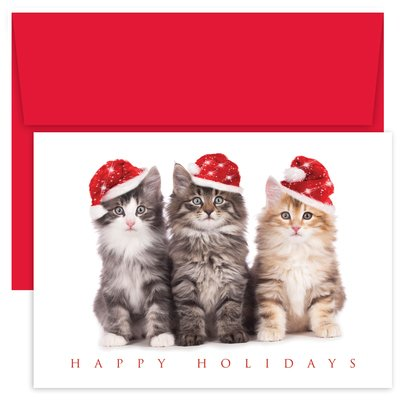 Masterpiece Holiday Collection 18-Count Christmas Cards, Christmas Kittens