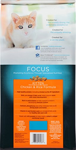 Purina-Pro-Plan-Dry-Cat-Food-Focus-Kitten-Chicken-and-Rice-Formula-7-Pound-Bag-Pack-of-1