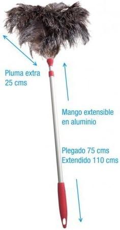 Caja con 10 plumeros extra de avestruz con mango de aluminio extensible. Plumas de avestruz natural con poder electrostático: Amazon.es: Hogar