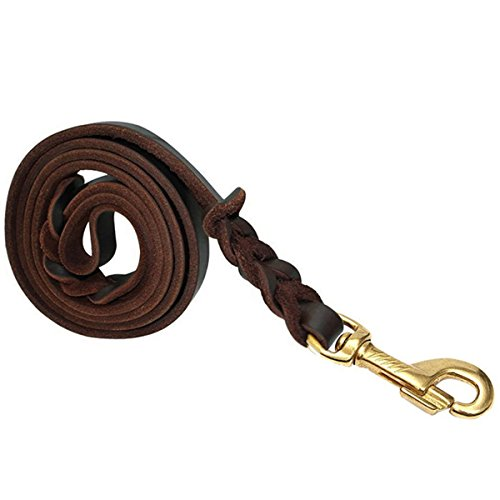 Braided Leather Leash (FOCUSPET Leather Dog Leash 6 ft Leather Dog Training Leash Pet Braided Dog Leash for Large Medium Leads Rope Dogs Walking&Training (1/2 Inch,Brown))
