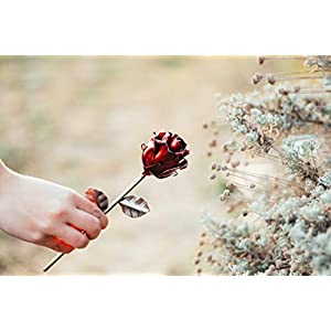 """♥ Eternal Rose Hand-Forged Wrought Iron""""Ideal gift fo Valentine's Day, Girlfriend, Mother's Day, Couple, Birthday, Christmas, Wedding Day, Anniversary Gift, Decor, Indoor"""" 5"""