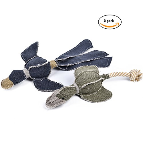 Dog Chew Toys, 2 PCS Canvas Squeaky Dog Toy for Large and Small Dogs