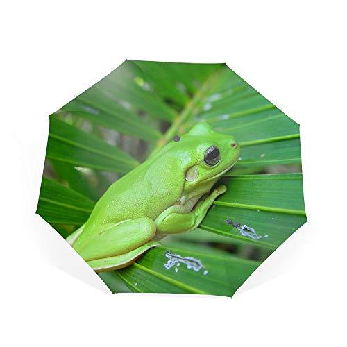 - Animal White Lipped Tree Frogs Green Travel Umbrella Reinforced Canopy, Ergonomic Handle Umbrella
