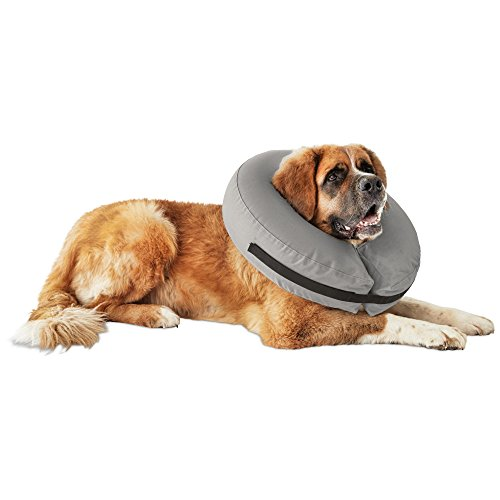 Well & Good Inflatable Collar for Dogs and Cats, XX-L/XXX-L, (Best Dog Collar Xxx)
