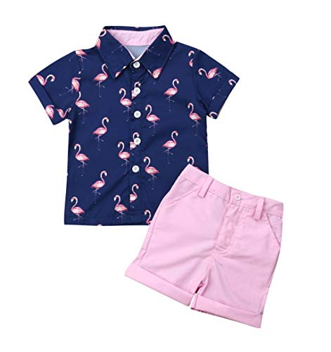 1-6T Toddler Boy Outfit Short Sleeve Flamingo Print Button Up Shirt + Bermuda Style Pink Shorts (Pink, 1-2 Years Old)