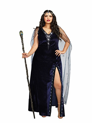 Blue Halloween Costumes (Dreamgirl Women's Plus-Size The Sorceress Dramatic Velvet Costume Gown, Navy Blue,)