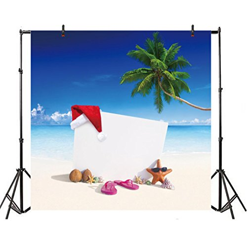 - Leyiyi 8x8ft Photography Background Merry Christmas Backdrop Xmas Holiday Red Cap Walnuts Palm Tree Seaside Sand Beach Sunglasses Starfish Slippers Happy New Year Photo Portrait Vinyl Studio Prop