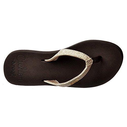 Blanco Marrón Sassy Blanco Reef Negro Flop Sandal Flip Las Plata Estrella Cojín de Mujeres Marrón pnxSWwqHR