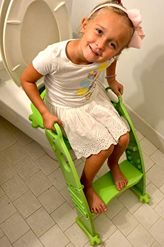 7 Best Potty Training Seat With Ladder 2020 Reviews