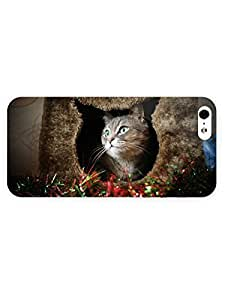 3d Full Wrap Case for iPhone 5/5s Animal Cat In The Box54 by ruishername