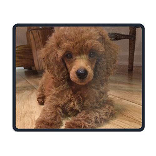 Pink Poodle Rocker - Poodle Mouse Pad,Gorgeous Color Printed Mousepad Non Slip Rubber Mouse pad Gaming Mouse Pad