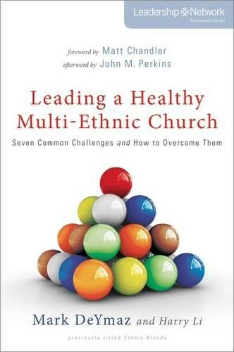 Leading a Healthy Multi-Ethnic Church: Seven Common Challenges and How to Overcome Them (Leadership Network Innovation Series)