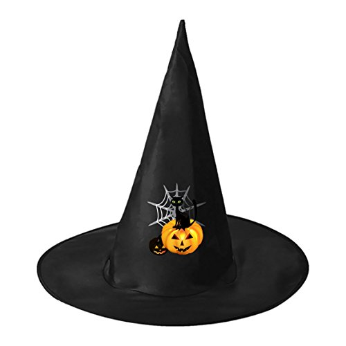 SeSHU Black Magic Witch Cape with Black Cat Pumpkin in Halloween Fancy Ball (Homemade Halloween Spider Web)