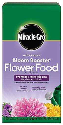 MiracleGro Water Soluble Bloom