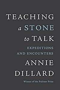 Teaching a Stone to Talk: Expeditions and Encounters