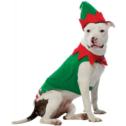 Rasta Imposta Elf Dog Costume, Large