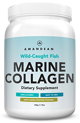 (Premium Anti-Aging Marine Collagen Powder 17.6 Oz | Wild-Caught Hydrolyzed Fish Collagen Peptides | Type 1 & 3 Collagen Protein Supplement | Amino Acids for Skin, Hair, Nails | Paleo Friendly, Non-GMO)